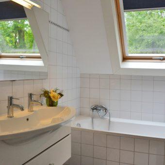comfortabele badkamer met douche en ligbad